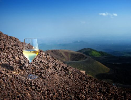 The volcanic in wine at the Institute of Masters of Wine