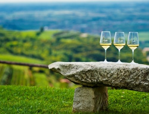 SOAVE – PREVIEW 2013