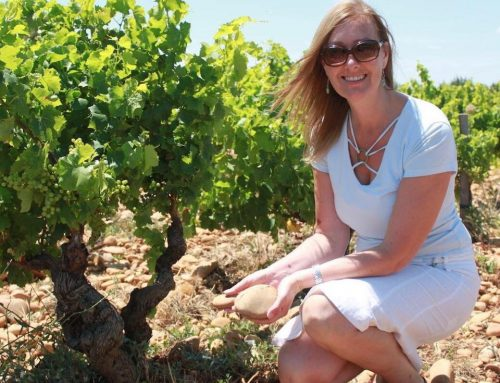 Institute of Masters of Wine: Jane wins the Soave essay contest