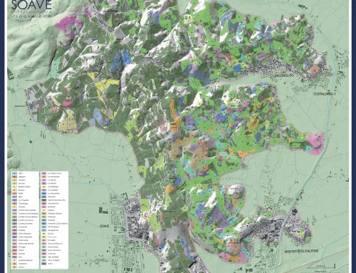 THE SOAVE WINE MAP