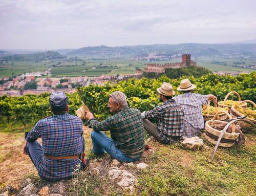 """Summer of Soave"" accende l'estate inglese"