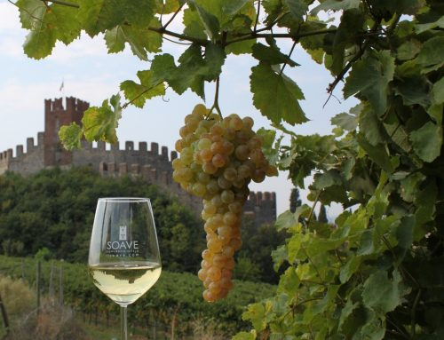 US Buyers on the hunt for new Soave wines