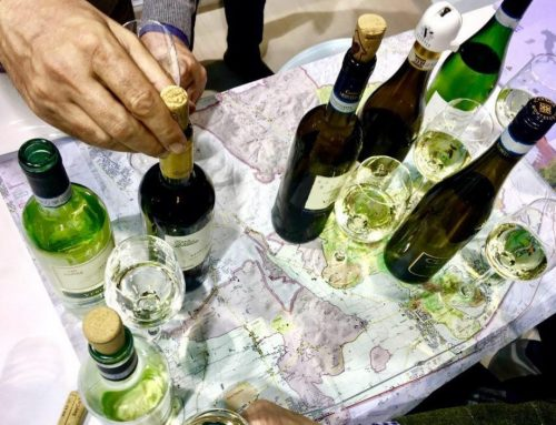 Soave Stories e Soave Seven, incredibili percorsi nel calice